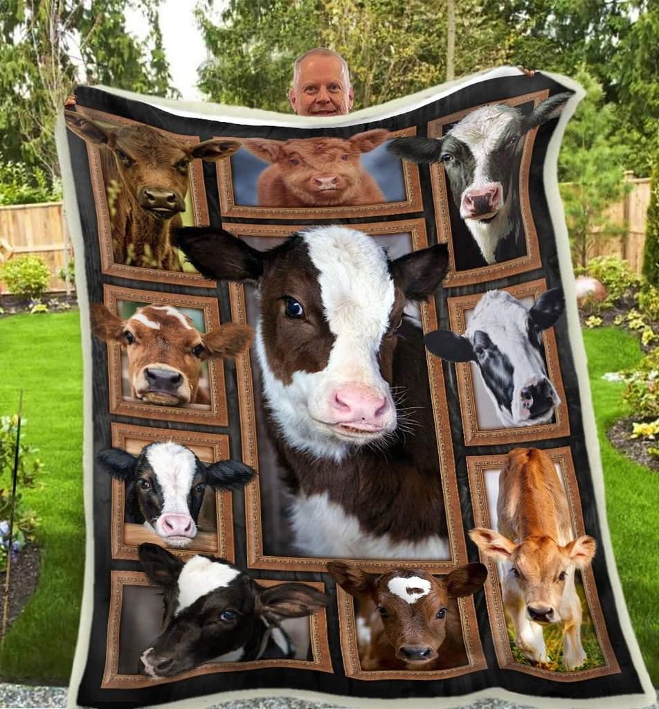 Cute cows blanket 3