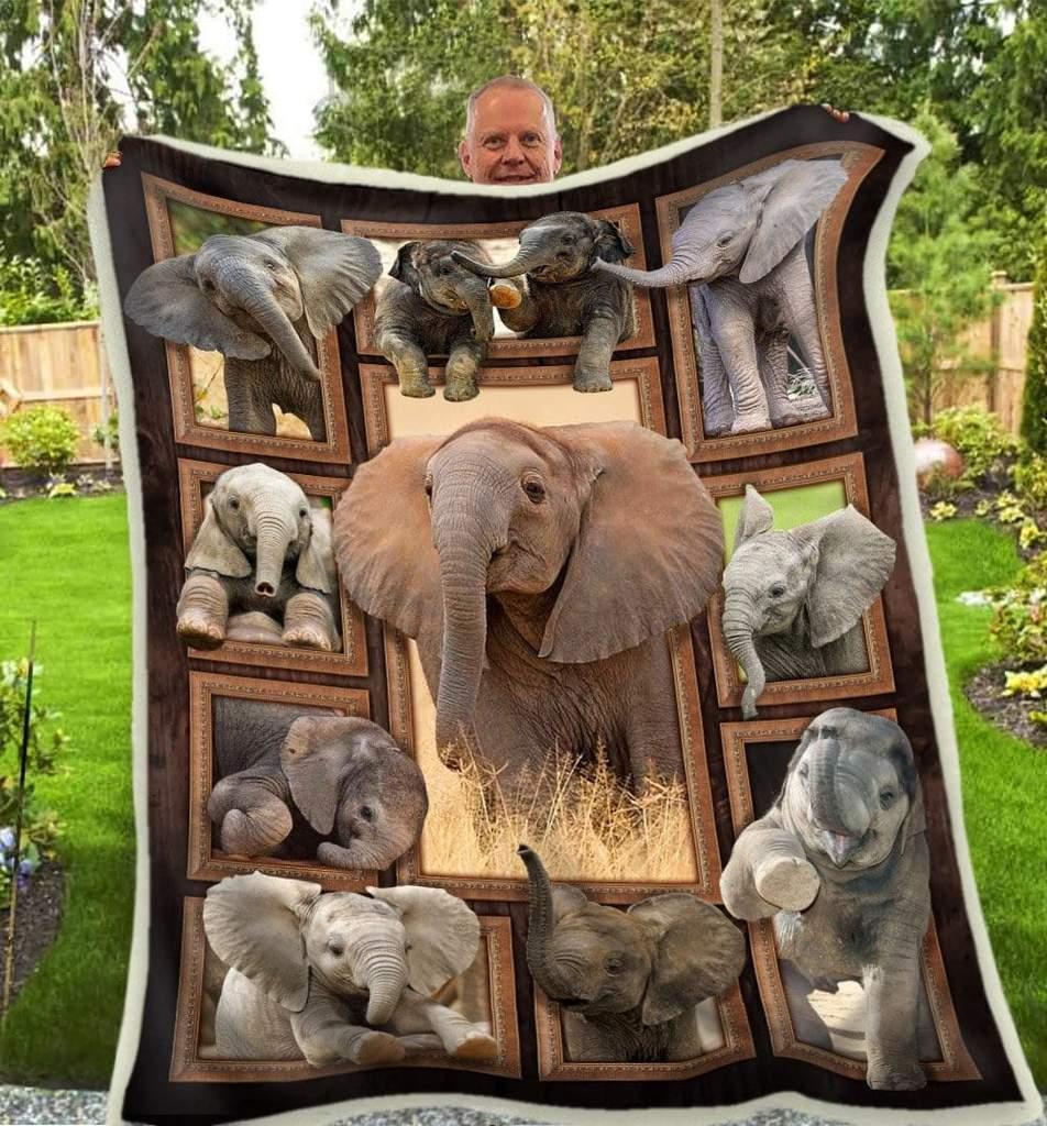 Cute elephants blanket 2