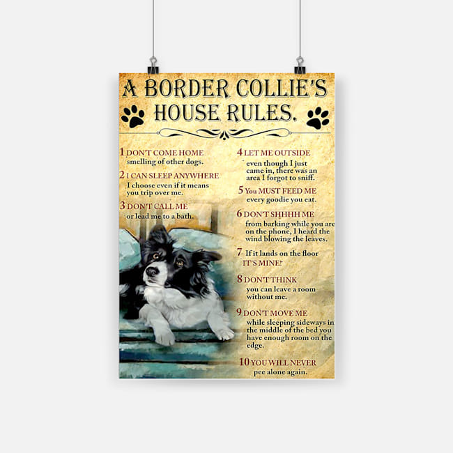 A border collie's house house rules poster 2