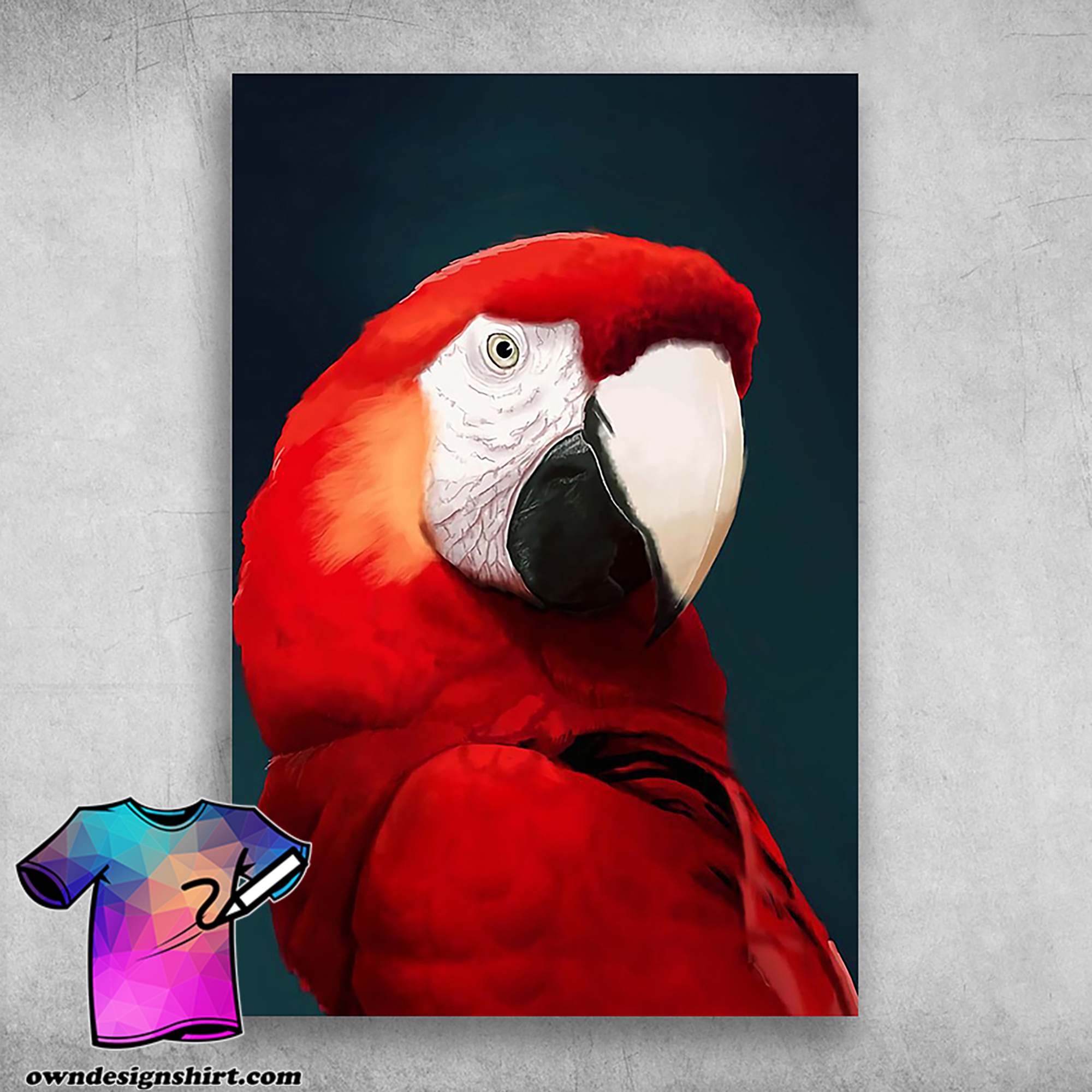 Amazing macaw beautifully designed red parrot poster