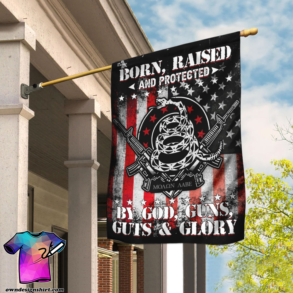 Born raised and protected by god guns guts and glory 2nd amendment flagv