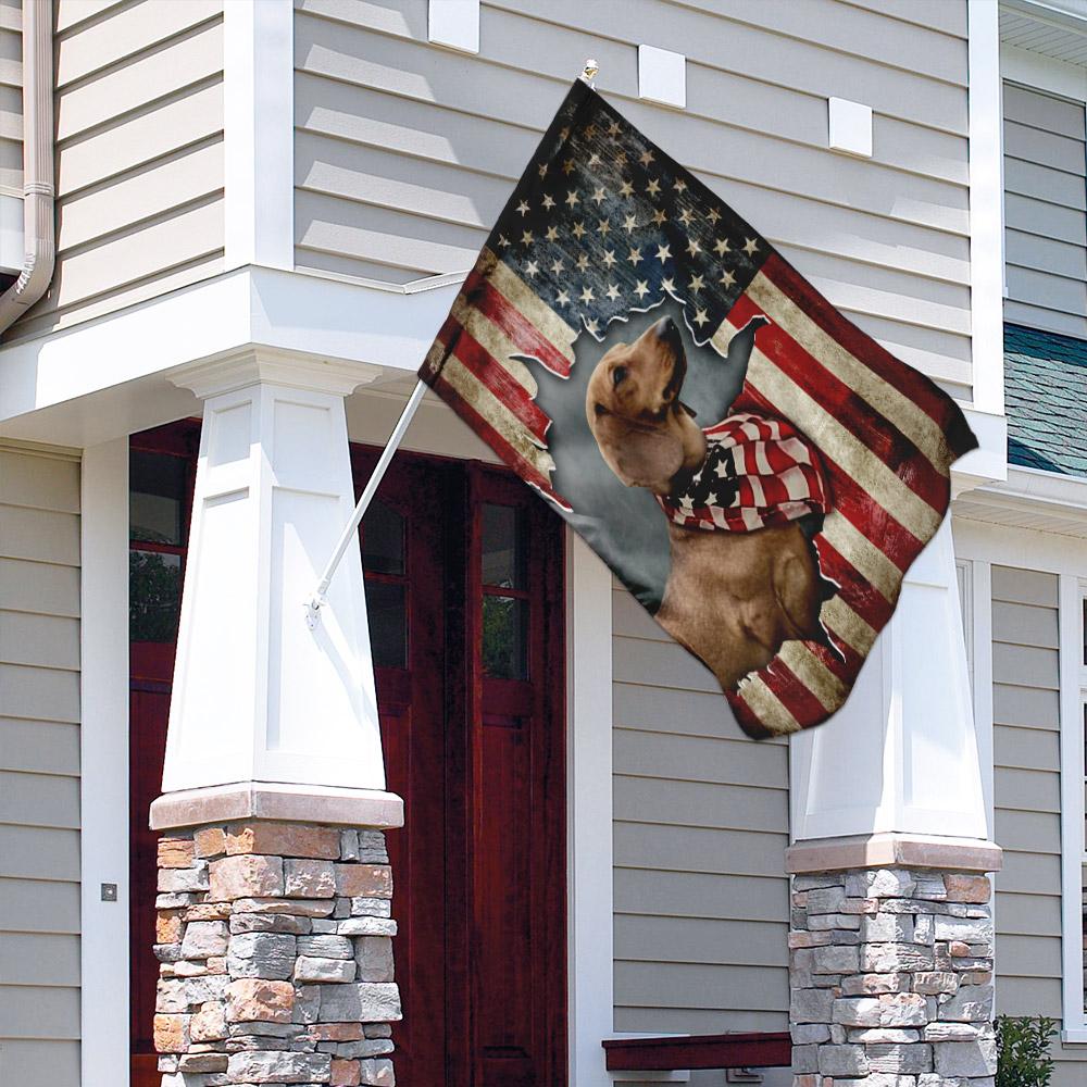 Dachshund happy 4th of july american us flag 3