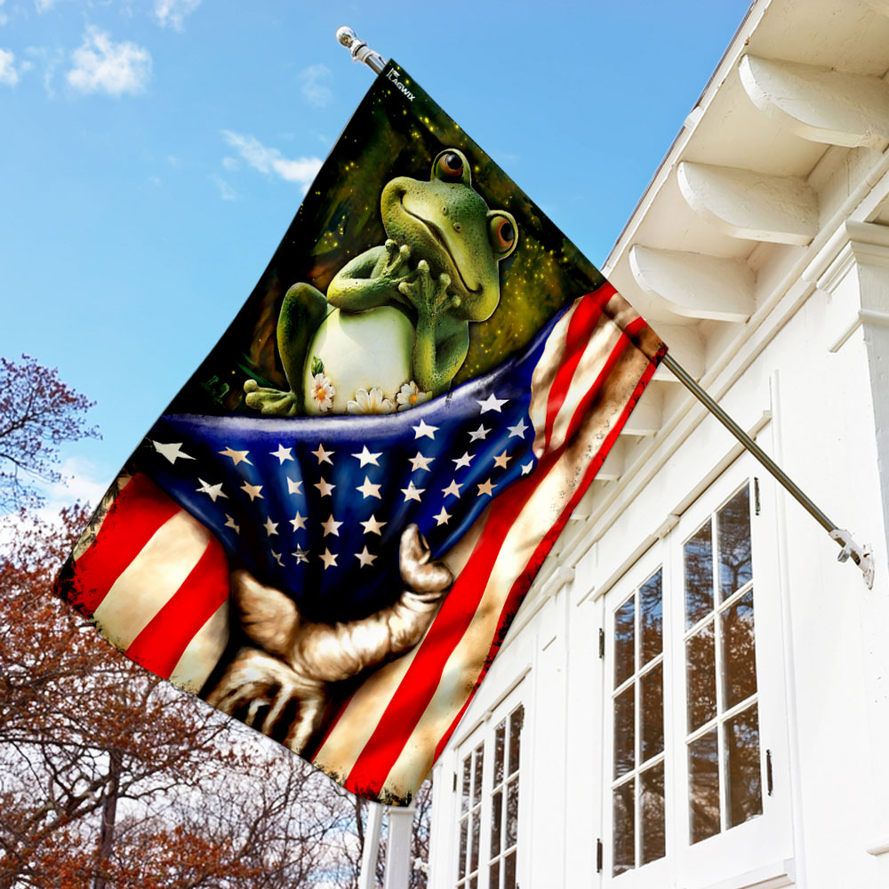 Frog american flag 1