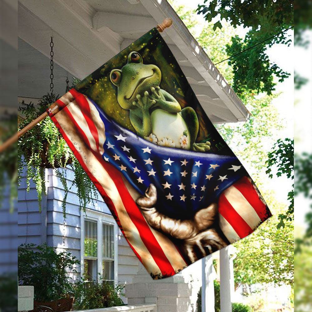 Frog american flag 2