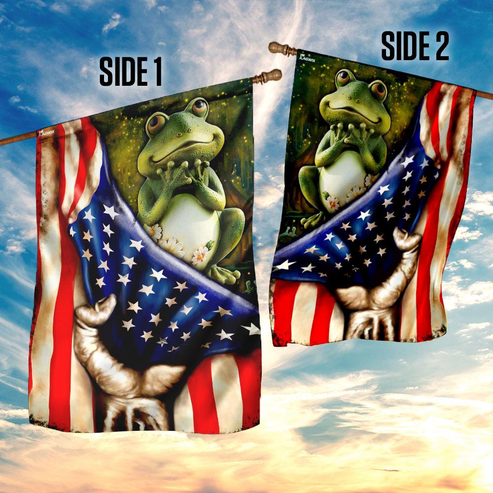 Frog american flag 4