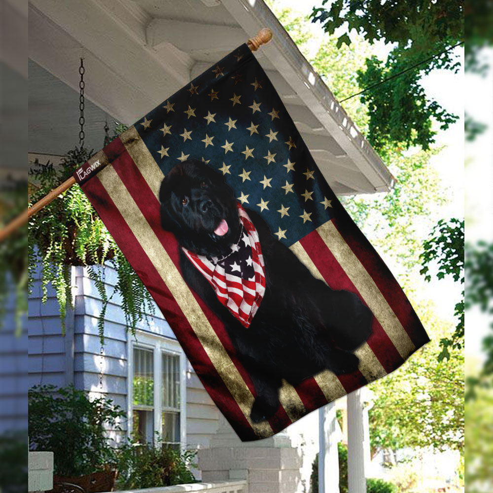 Newfoundland dog american flag 2