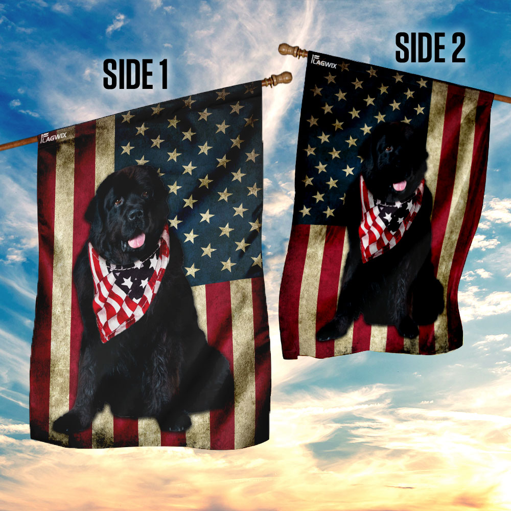 Newfoundland dog american flag 3