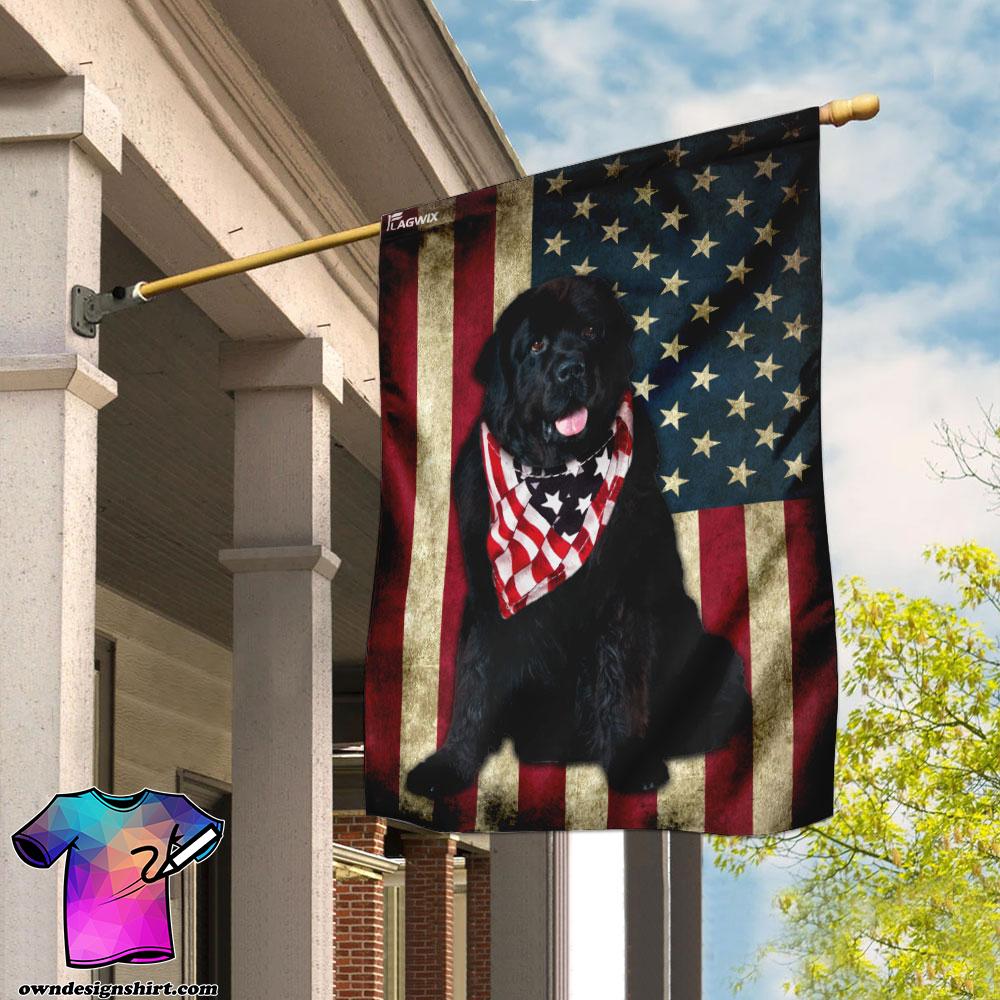 Newfoundland dog american flag
