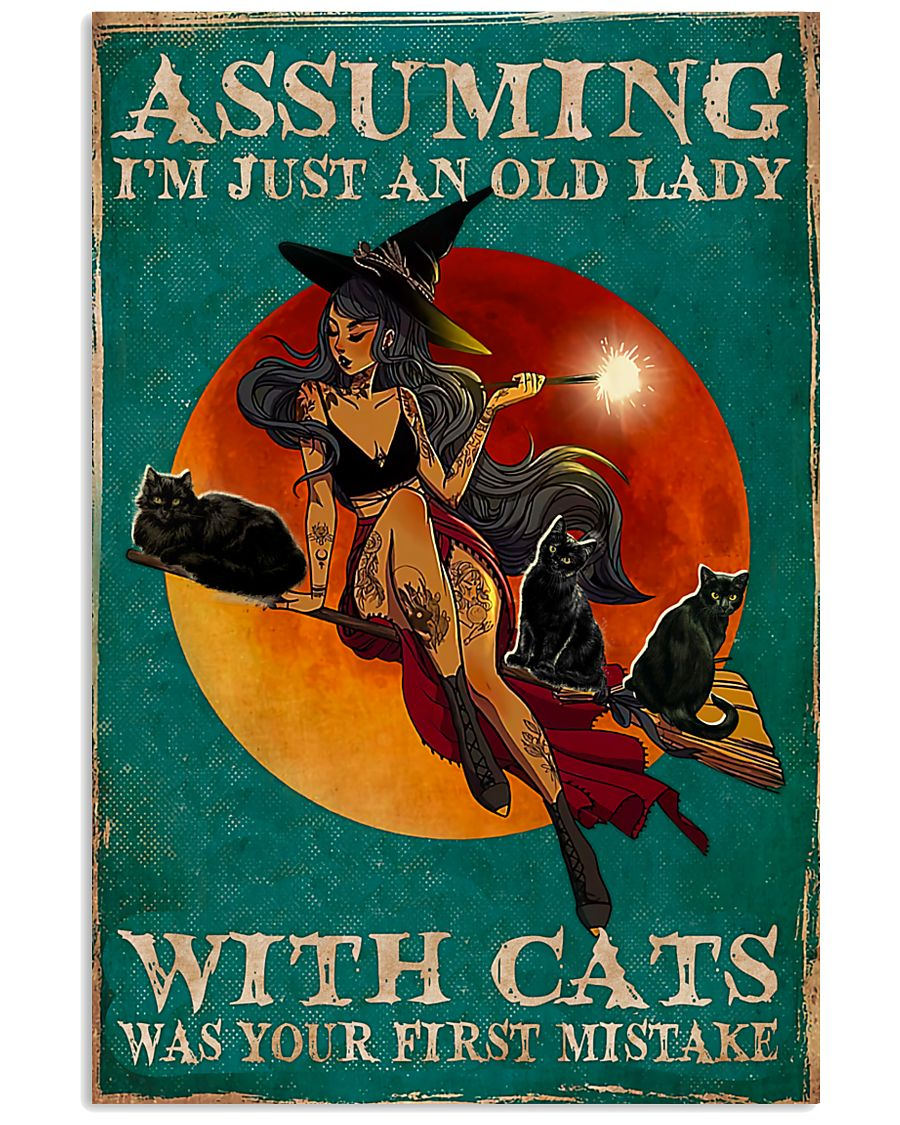 witch assuming i'm just an old lady with cats was your first mistake poster 1