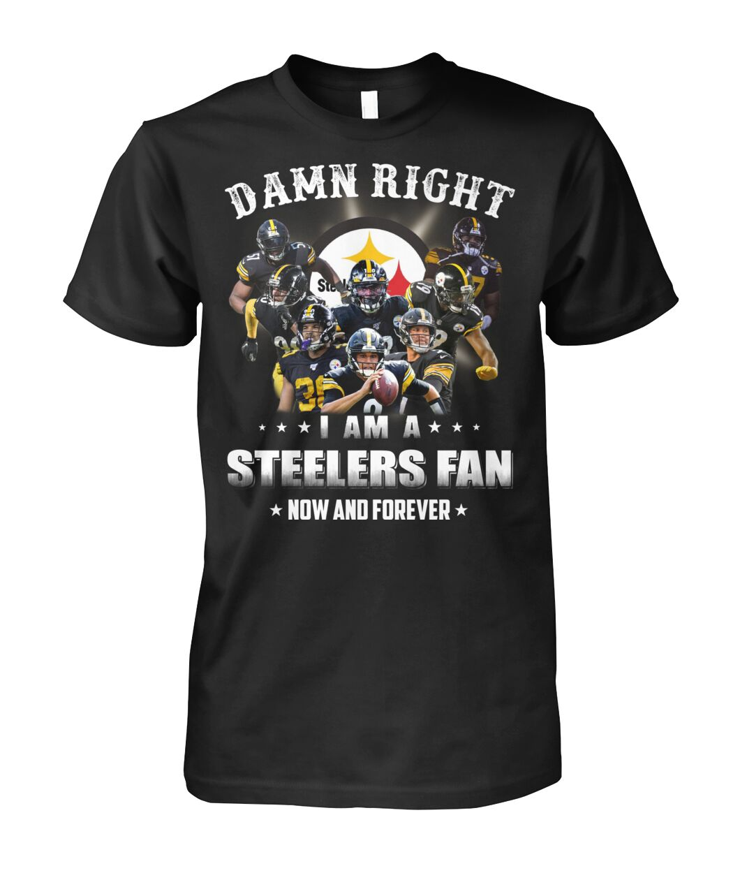 pittsburgh steelers damn right i am a steelers fan now and forever tshirt