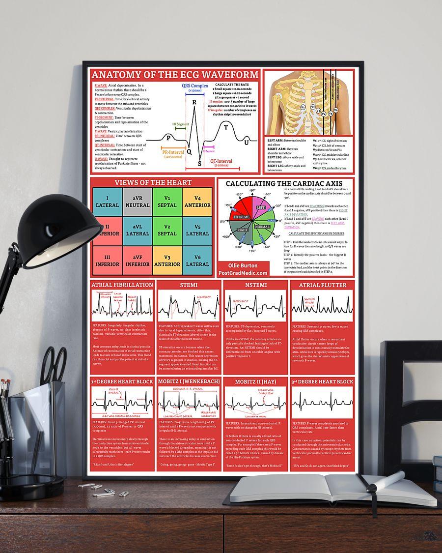 anatomy of the ecg waveform cardiologist poster 2