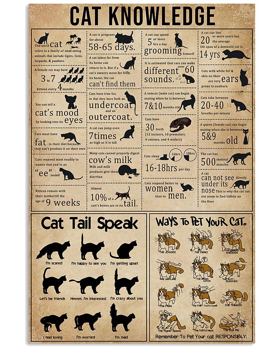 cat knowledge vintage poster 1