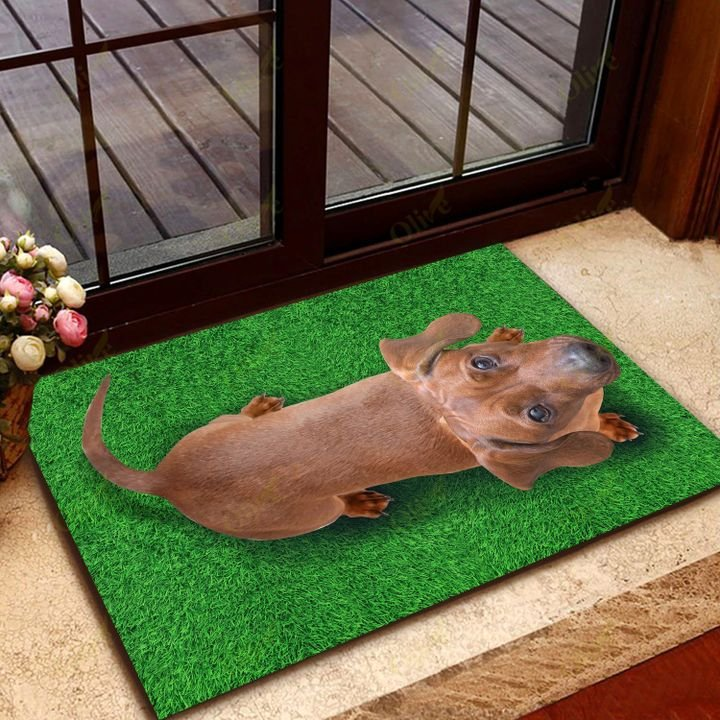 dog lover dachshund on grass vintage doormat 2