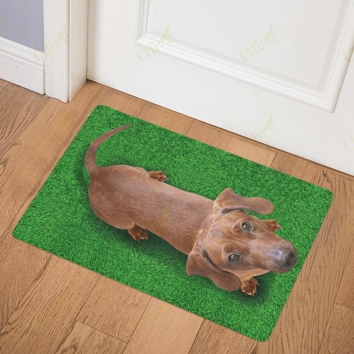 dog lover dachshund on grass vintage doormat 3