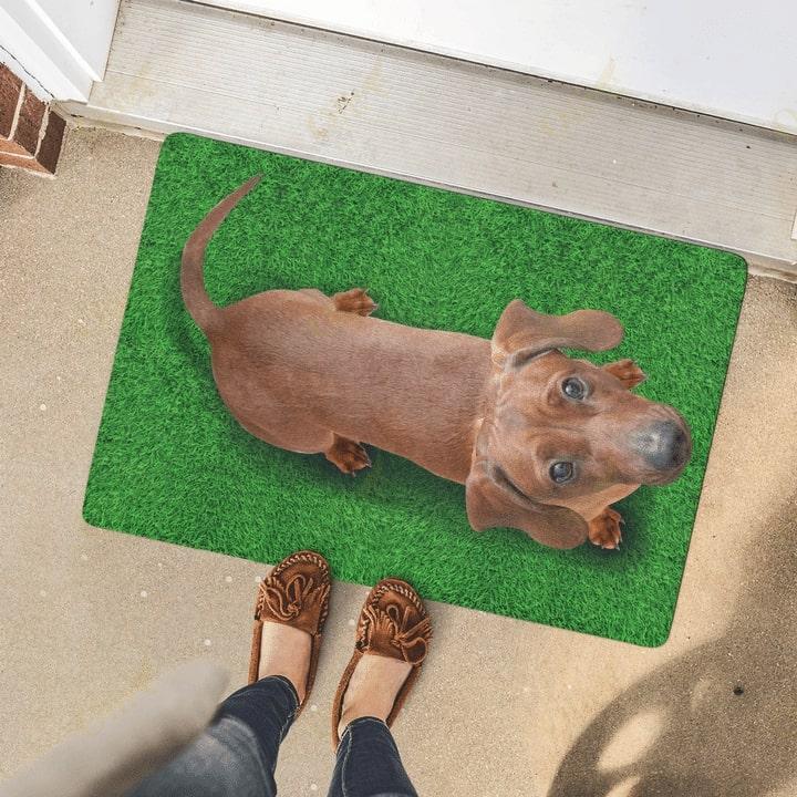 dog lover dachshund on grass vintage doormat 4