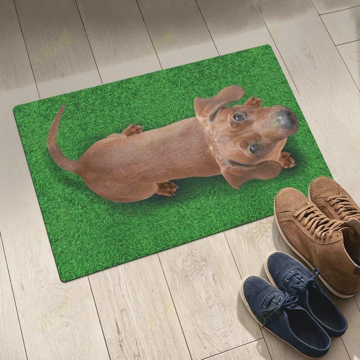 dog lover dachshund on grass vintage doormat 5